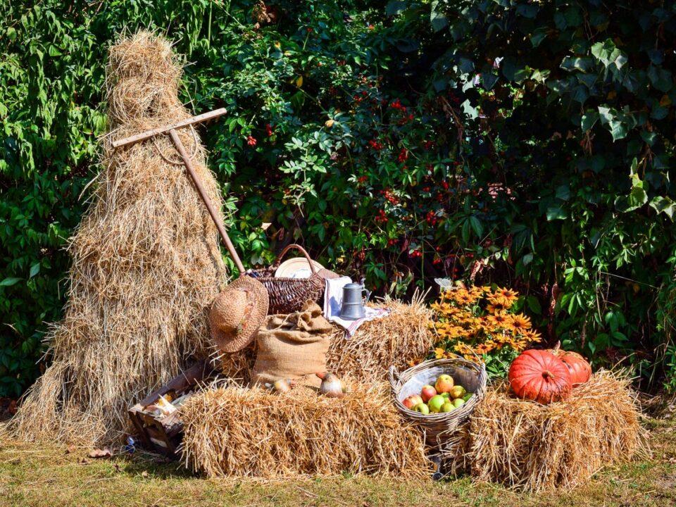 Gabentisch zu Mabon soll die Fülle der Ernte symbolisieren