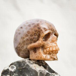 Handgearbeiteter Kristallschädel aus fossiler Koralle