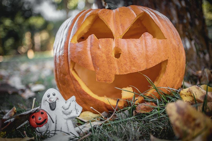 Geschnitzter Halloween-Kürbis auf einer herbstlichen Wiese