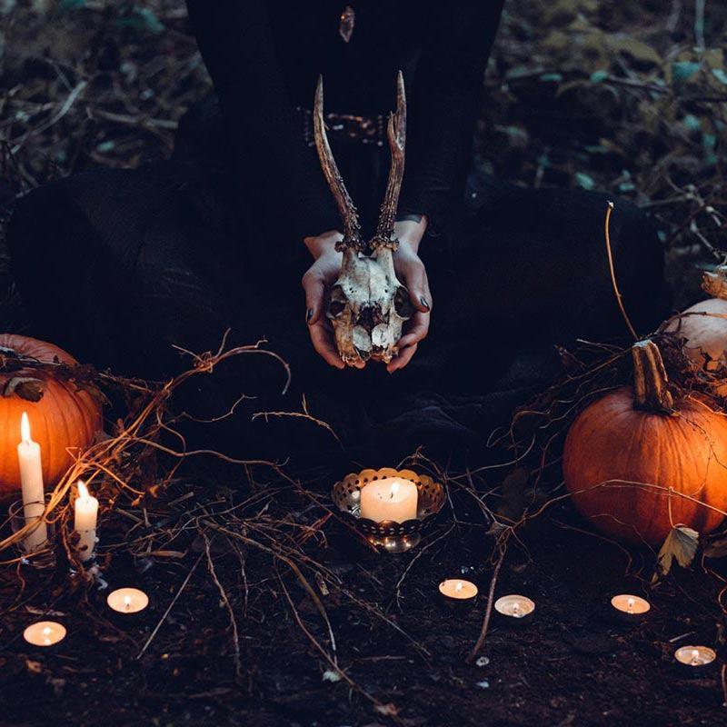 candle-1868640-web-800q
